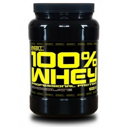 100% Whey Professional Protein - Best Nutrition 1000g