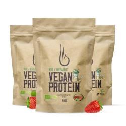 Vegan Protein - Bio Organic 400g - NATURAL NUTRITION